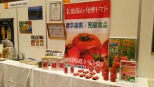 信州発酵食品乳酸菌