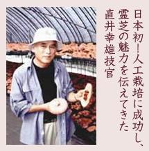 日本初!人工栽培に成功し、 霊芝の魅力を伝えてきた 直井幸雄技官