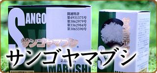 サンゴヤマブシ